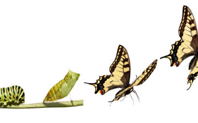 Is it Depression? OR Is it the Butterfly Effect?